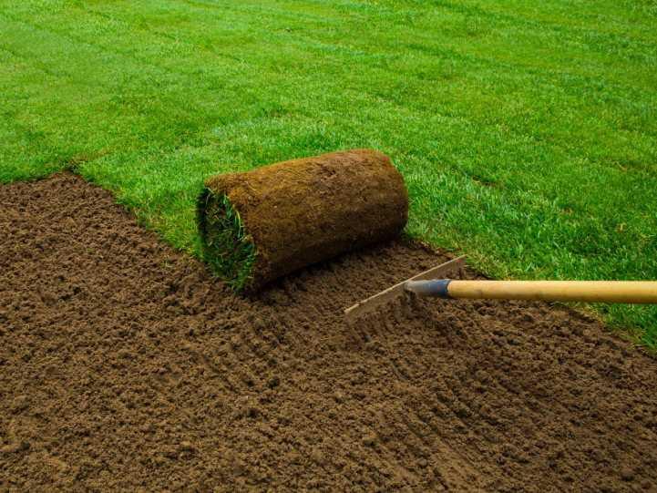 Как укладывать рулонный газон: советы по выбору и технология ...