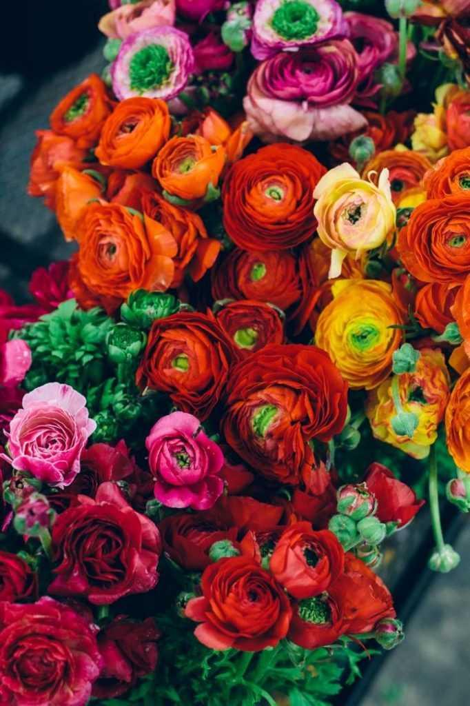 Цветы из крема пошаговое фото полностью