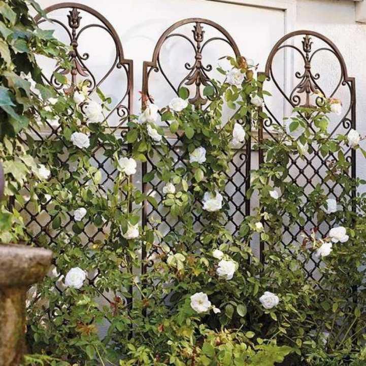 коротким рукавом, подпорки для роз своими руками фото следующий цех