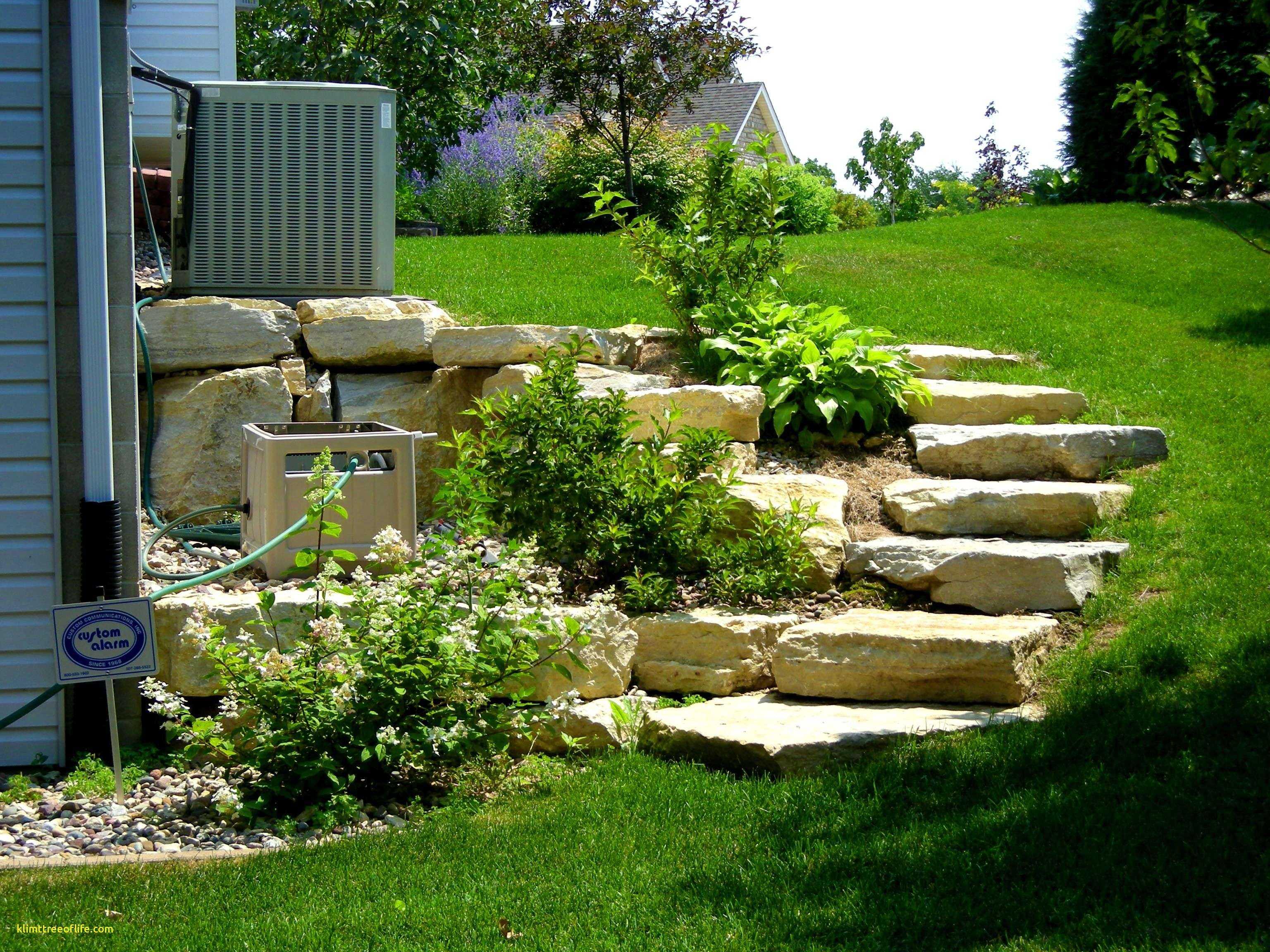 любом более дизайн садового участка с сильным уклоном картинки красавицу трудно было
