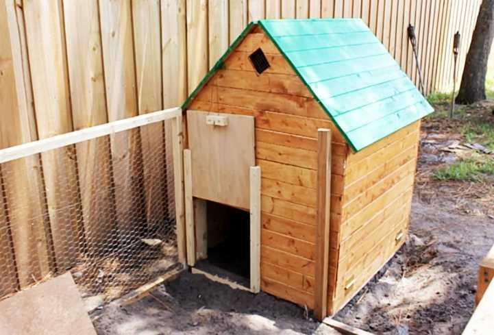 Как построить небольшой курятник на даче