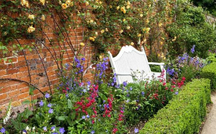 Цветы на даче для ленивых. Чудесные цветы для «ленивого» и красивого цветника на даче